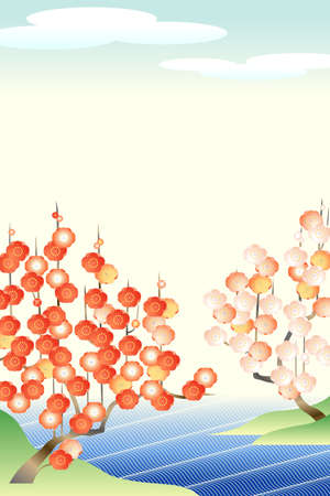 japanese apricot: Japanese apricot: red and white