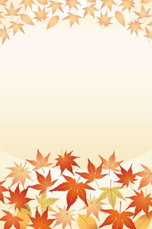 hojas de maple: Hojas de arce  Vectores