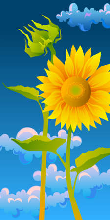 beautiful sunflowers with blue sky Illustration