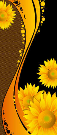 beautiful yellow Sunflowers on black background Vector