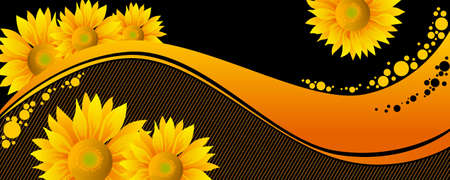 beautiful yellow Sunflowers on black background Illustration