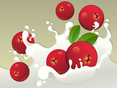 cranberries: Milk splash with cranberries on light