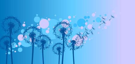 flimsy: dandelions on blue background Illustration