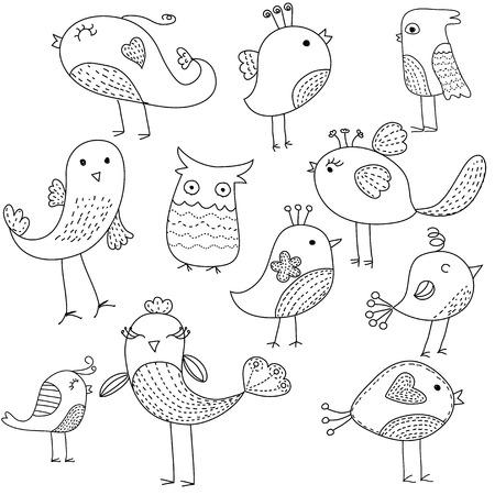 technically: Bird set