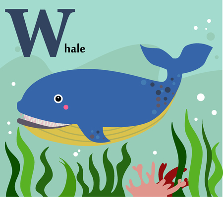 Animal alphabet for the kids  W for the Whale Stock Illustratie