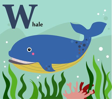 Tieralphabet für die Kinder W für den Wal Standard-Bild - 30726619