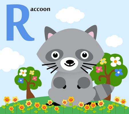 Animal alphabet for the kids  R for the Raccoon