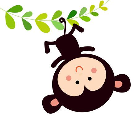 monkey clip: monkey