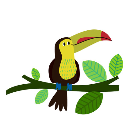 tucan: Cartoon toucan Illustration