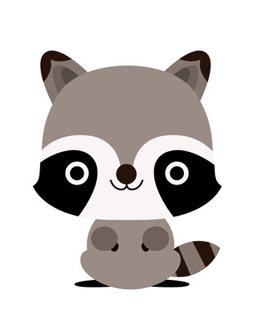 racoon: raccoon