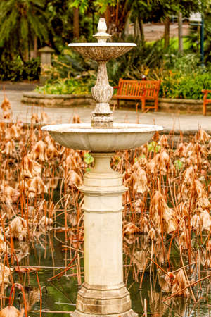 anklet: Old fountain in the middle dried lotus