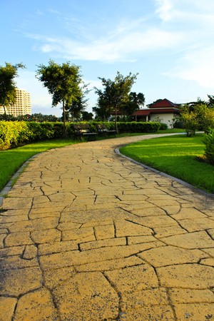 Pathway in garden.