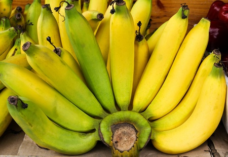 Bunch of bananas. Stock Photo