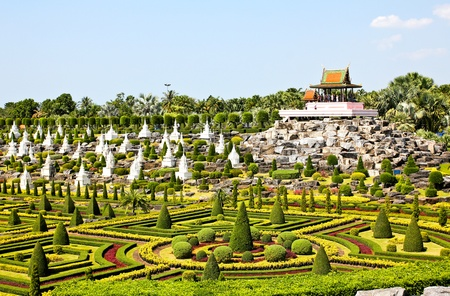 Tropical Garden in pattaya, thailand.