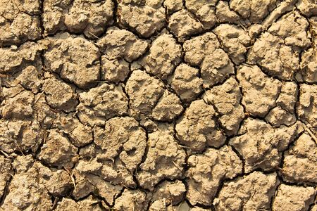 Cracked by the heat long lifeless soil photo