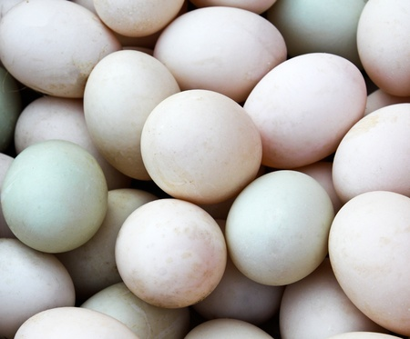 Many Duck eggs on a market Stock Photo - 12846959