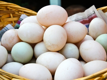 Many Duck eggs on a market Stock Photo - 12847028