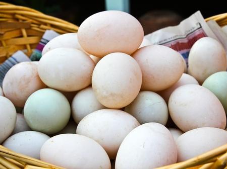 Many Duck eggs on a market Stock Photo - 12847028