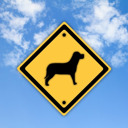 A dog sign on beautiful sky background. photo