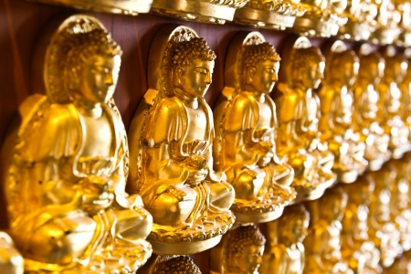 Many small Buddha statue on the wall at chinese temple, Thailand Stock Photo - 14135279
