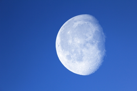 Big moon in the night blue sky.