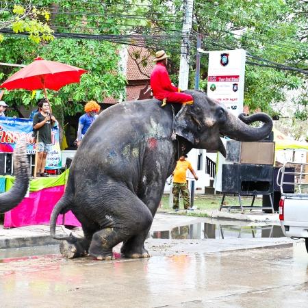 Ayuttaya, Tha�lande - 15 avril: Festival de Songkran est c�l�br� � la Journ�e du Nouvel An traditionnel du 13 Avril au 15, avec les �l�phants danser le 15 Avril 2013, � Ayutthaya, Tha�lande.