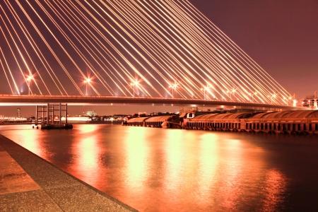 viii: The Rama VIII bridge over the Chao Praya river at night in Bangkok, Thailand