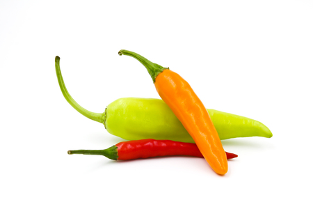 Hot chili pepper isolated on a white background photo