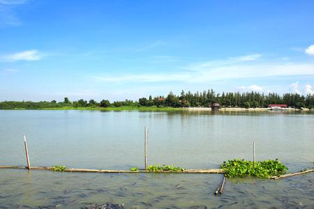 chao: Chao Phraya River in Thailand.