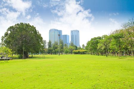 trees  sky: Green city park