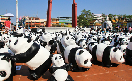 represent: BANGKOK,THAILAND - MARCH 14, 2016 : 1600 Pandas+ TH, Paper mache Pandas to represent 1,600 Pandas and to raise awareness in conservation and sustainable development for endangered animals in Thailand.