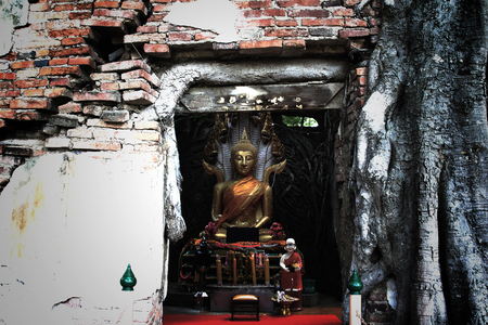 unseen: Unseen Thailand,Ruins of old temple with a Bodhi tree root,Sang Katea temple,Sala Daeng, Muang, Angthong, Thailand (Public property)