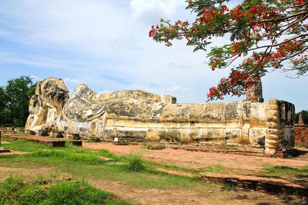 phra nakhon si ayutthaya: Giant Buddha statue in the historical Park of Ayutthaya, Phra Nakhon Si Ayutthaya, Thailand