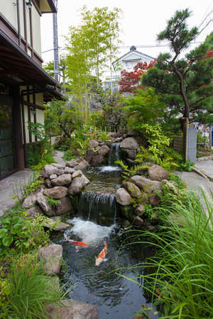Waterfall in a pond with carp fish