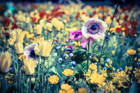 Flower garden as vintage stlye