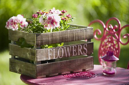 Garden idyll Stock Photo - 13956010