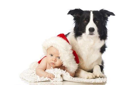 강아지와 아기