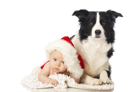 tots: Baby with dog