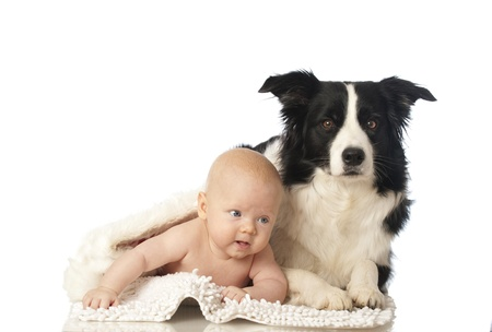 Baby with dog Stock Photo - 16519039