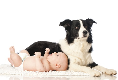Baby with dog Stock Photo - 16519046