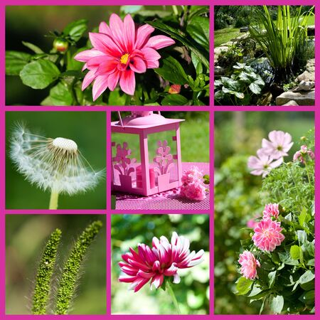 Spring collage photo