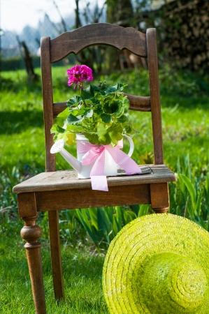 Garden idyll photo