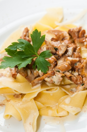 Chanterelle with pasta photo
