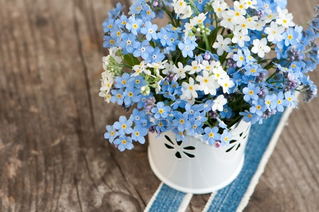 Forget me not flowers Stock Photo - 19927152