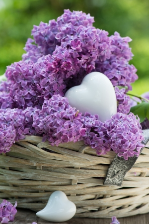 Lilac in a basket on wooden background photo