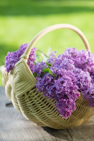 syringa: Lilac in a basket on wooden background