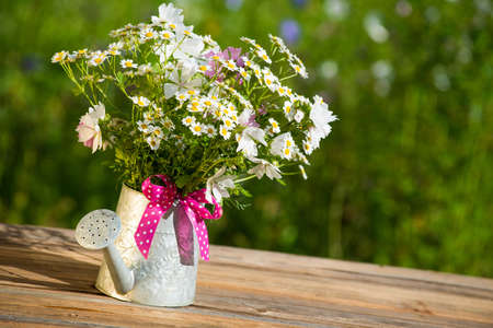 Watering can with garden flowers photo