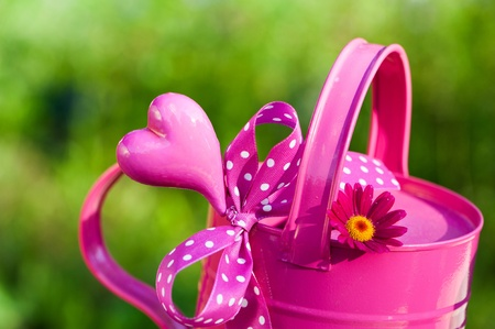 Watering can with heart and gift bow photo