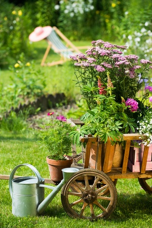 Idyllic garden with old wooden cart photo