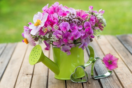 watering can: Pink garden flowers in a small watering can Stock Photo